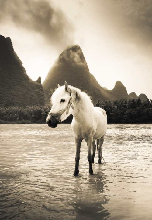 Guilin 9 (505 of 680)-X2